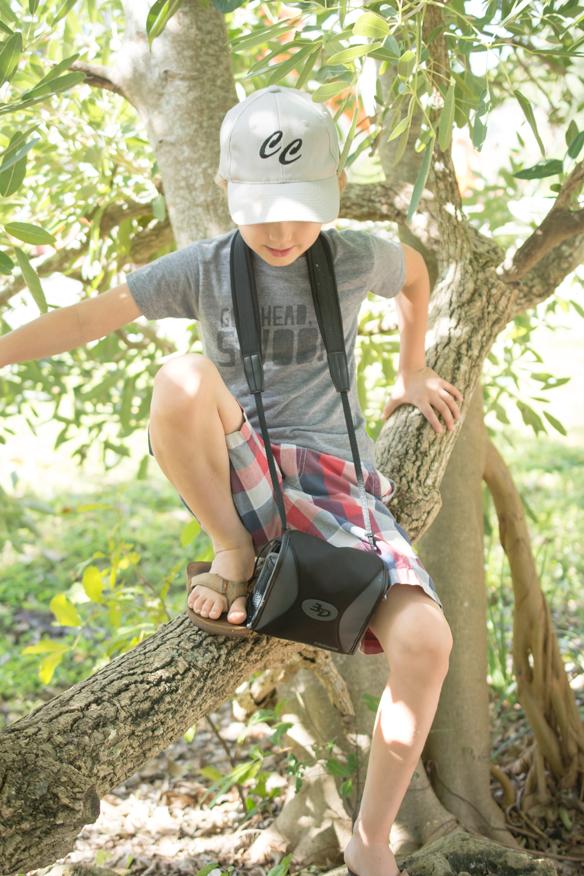 homeschooling climbing trees